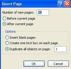Insert page dialog box screenshot