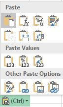 Paste Options button showing options